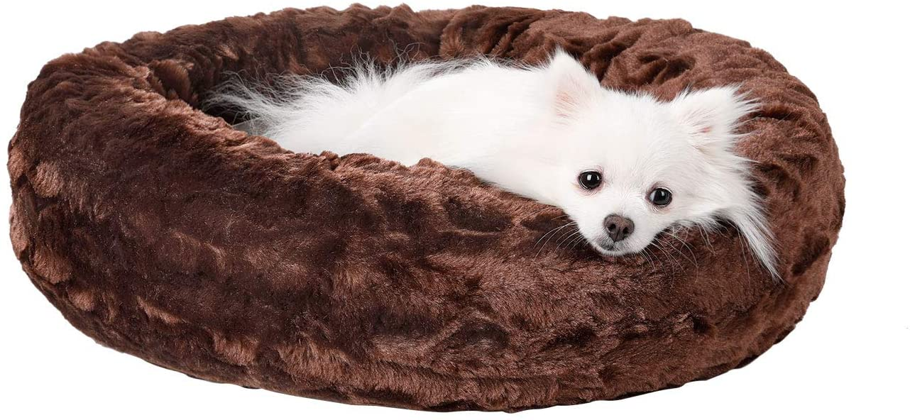 fluffy white dog laying on a donut style cuddle bed